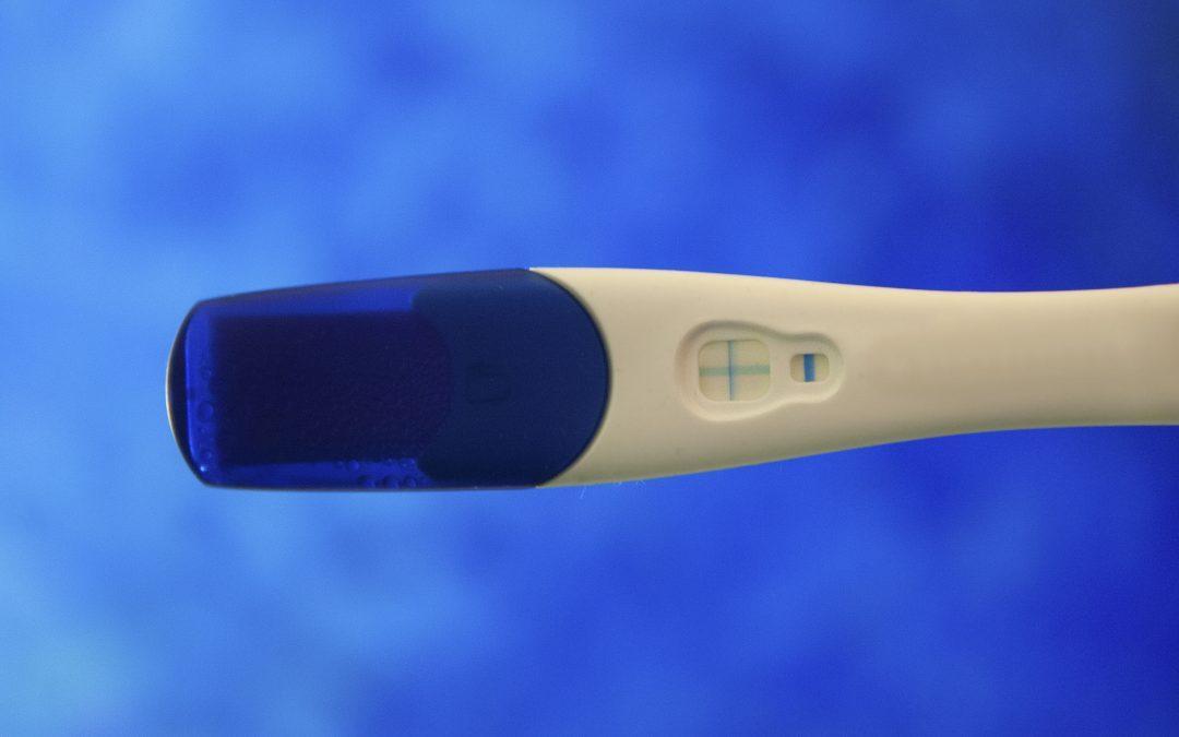 Charita, benefiční akce, boj proti potratům