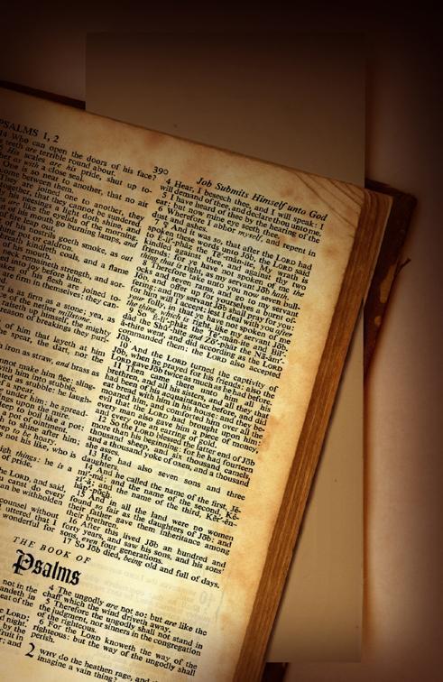 Proč je tolik Církví