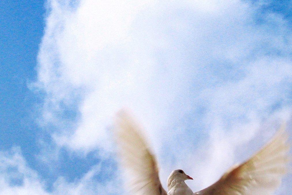 Duch Svatý, kdo je Duch Svatý, vysvětlení pojmu