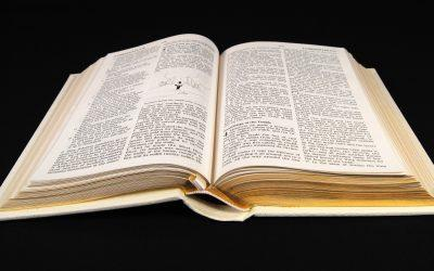 Kategorie slov s vylhaným novým významem