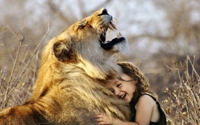 lion 3012515 1920 400x250 - Odkryté Lži