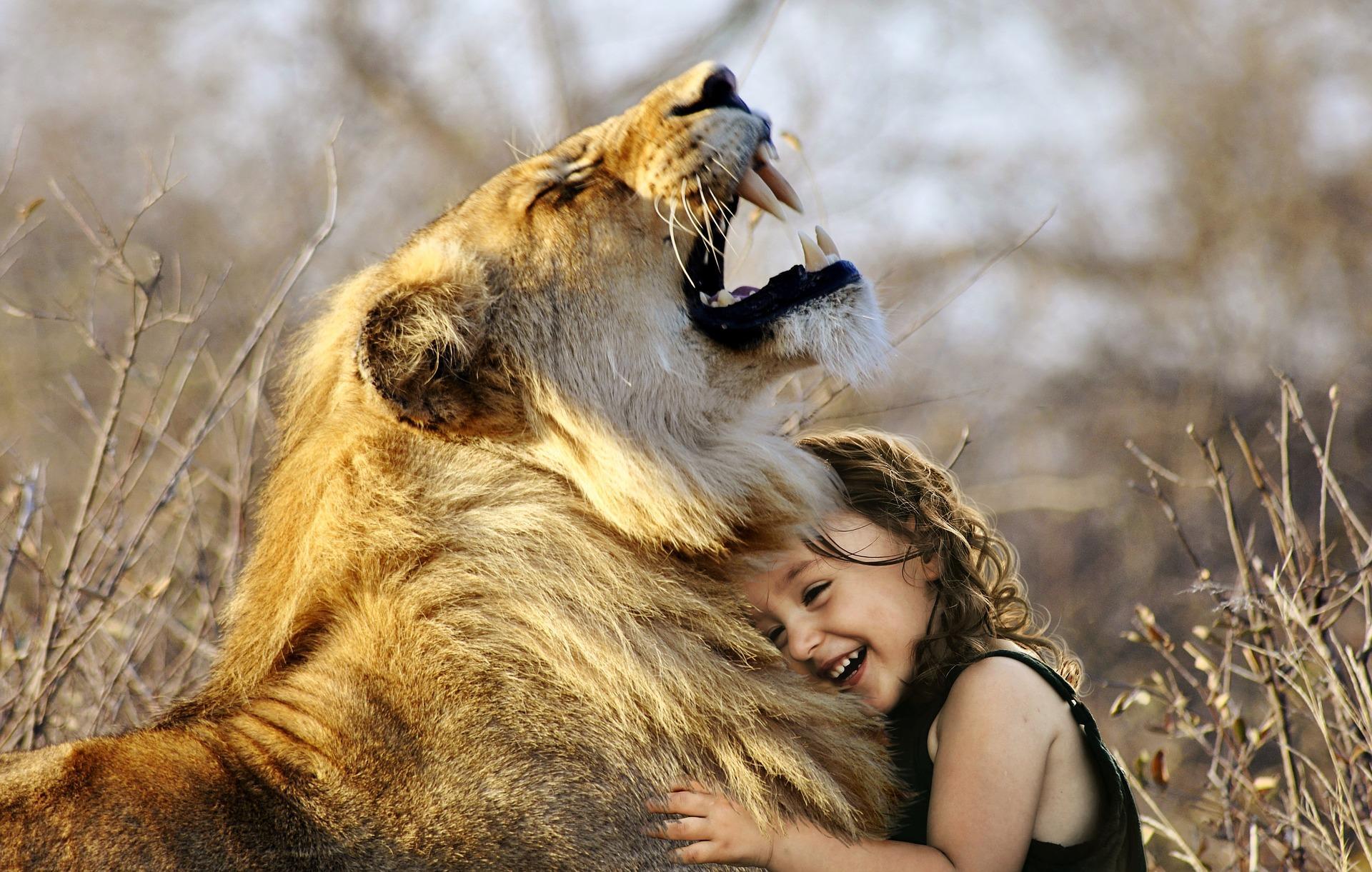 """lion 3012515 1920 - Pozor na různá """"křesťanská svědectví"""""""