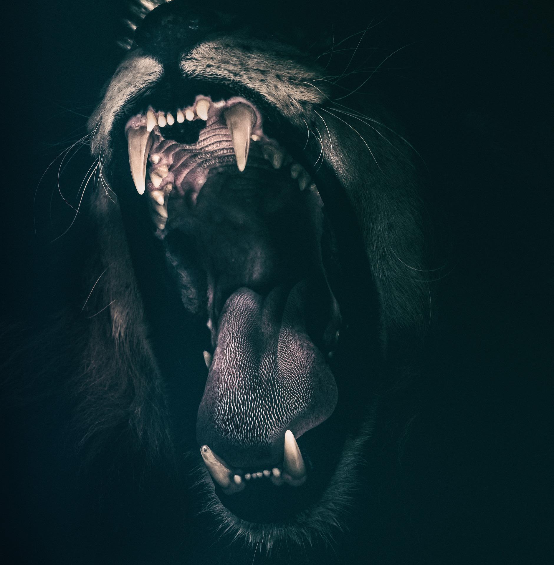 lion 2885618 1920 - Satan nechce, aby se o něm mluvilo pravdivě